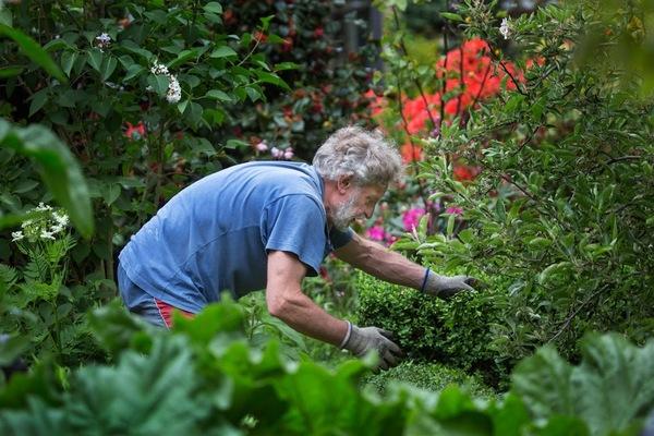 Zelf Tuin Aanleggen : Zelf tuin aanleggen of vraag naar een vakman in uw buurtu cbr