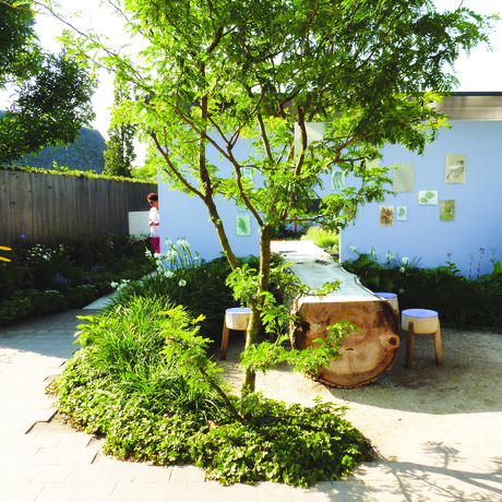 Bomen voor kleine tuinen