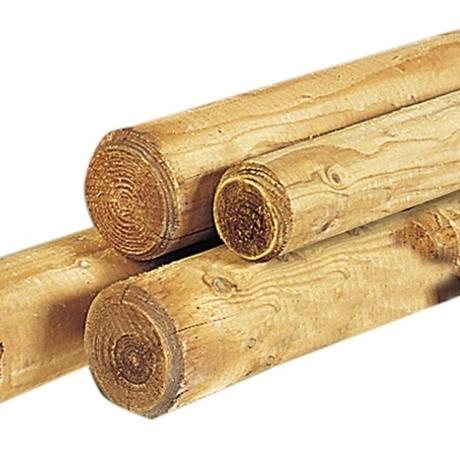 Palen en bamboestokken